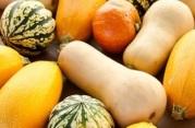 Pumpkins and Squash